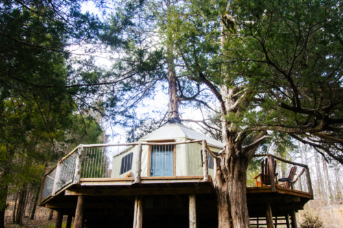 20190324 - Lost Valley AR - Tree house 23